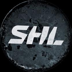 Ishockey SHL